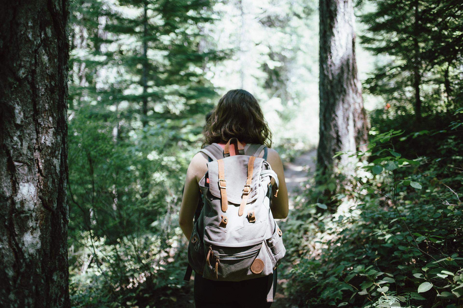 森林浴でリフレッシュ